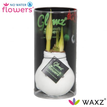 No Water Flowers waxz glowz met een glow in the dark wax laag